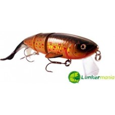 Lunkermania Titan 250F 250mm 100g HBT